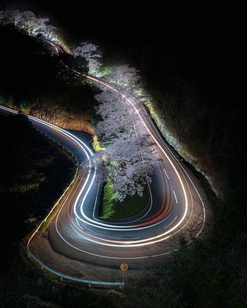 Guidando nella notte...